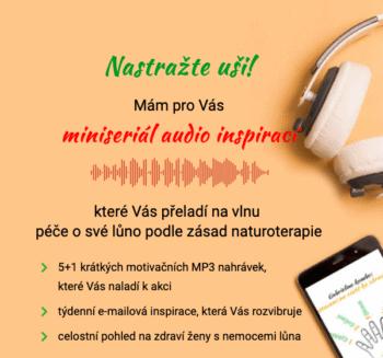 Miniseriál audio inspirací