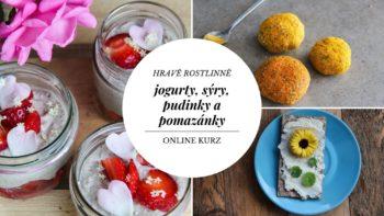Online kurz Hravě rostlinně: jogurty, sýry, pudinky a pomazánky
