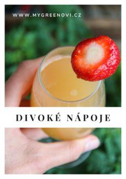 e-book Divoké nápoje